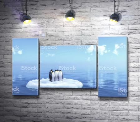 Пингвины на льдине в открытом море