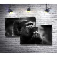 Задумчивая обезьяна