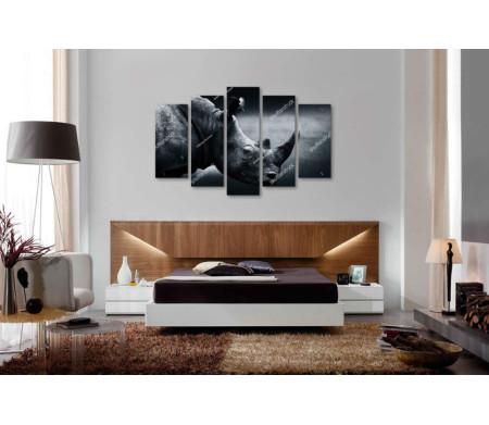 Черно-белое фото носорога