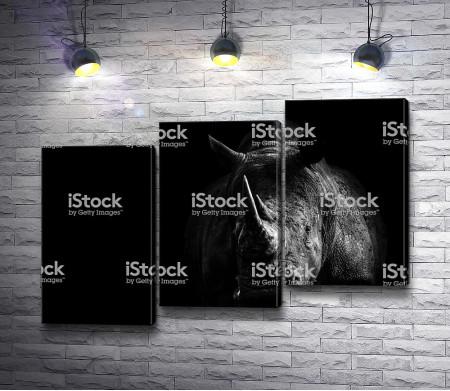 Носорог в черной гамме