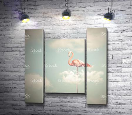 Фламинго в облаках