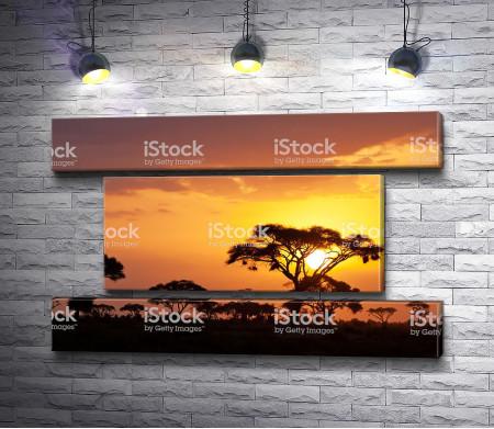 Закат в саванне Кении
