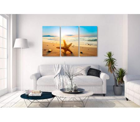 Морская звезда во время заката
