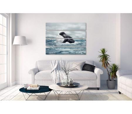 Морской котика и кит Белуха