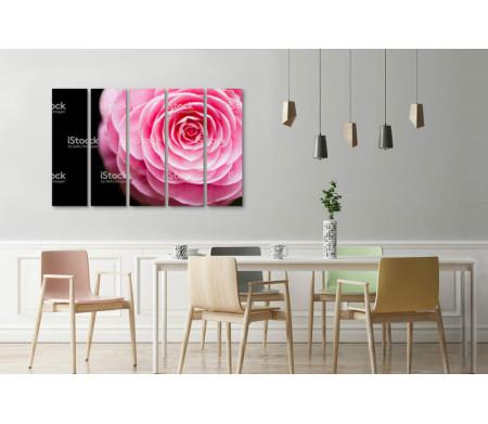 Бутон розовой камелии