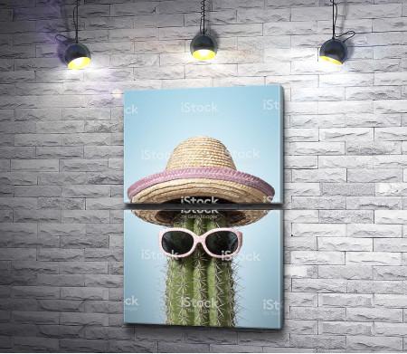 Кактус в шляпе