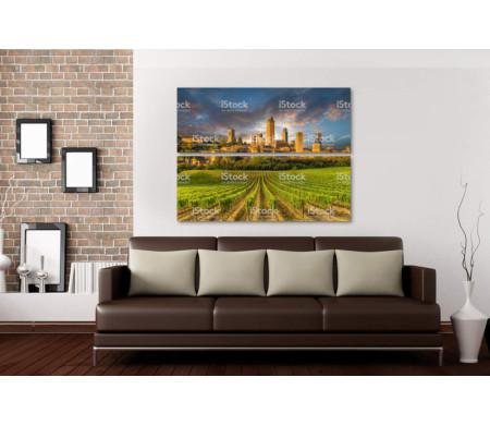 Виноградники на фоне древнего города