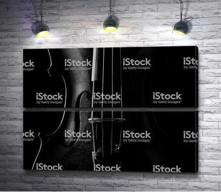 Черно-белое фото скрипки