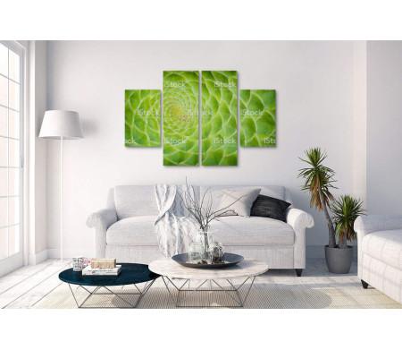 Ярко-зеленый суккулент