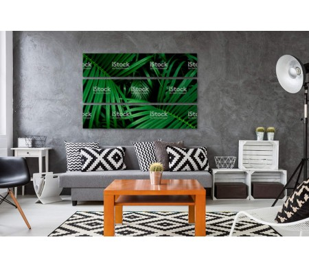 Пальмовые листья сочного зеленого цвета
