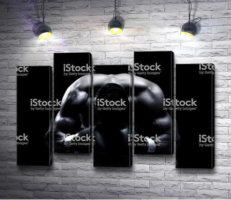 Боксер в черно-белой гамме