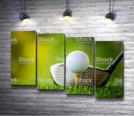 Клюшка и мяч для гольфа