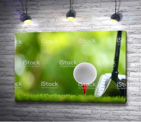 Мячик для гольфа перед ударом клюшкой