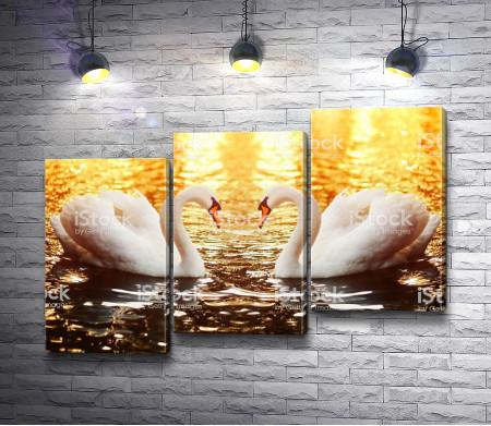 Два лебедя в лучах заката