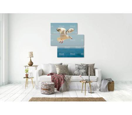 Чайка в полете над морем