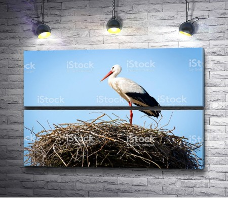 Аист стоит в гнезде из соломы