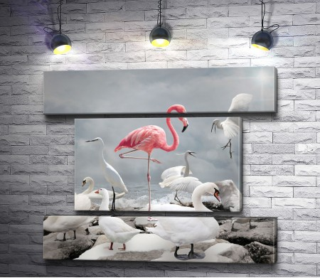 Розовый фламинго среде лебедей