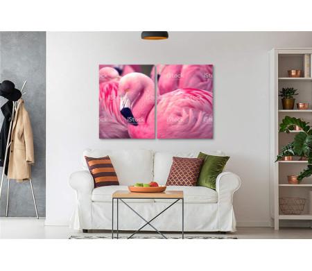 Розовый фламинго спит