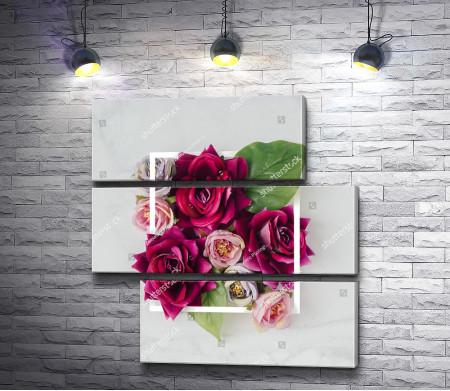 Алые розы в квадрате