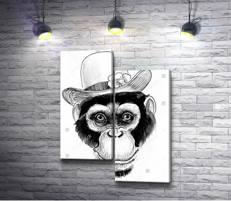 Морда обезьяны в шляпе