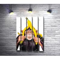 Обезьяна с бананом на голове