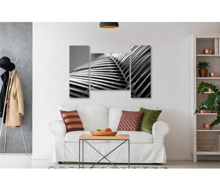 Черно-белый пальмовый лист