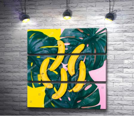 Бананы и листья монстеры