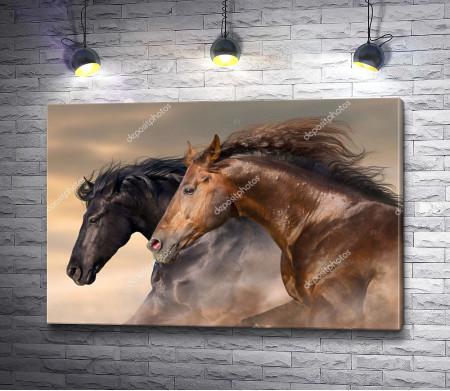 Две степные лошади