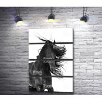 Черная лошадь с развивающейся гривой