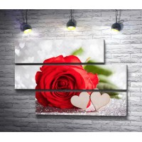 Алая роза и два сердца