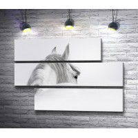 Лошадь. Рисунок карандашом