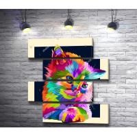 Радужный кот в рамке
