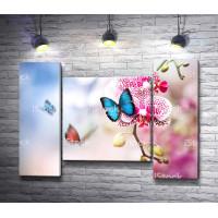Леопардовая орхидея с бабочкой