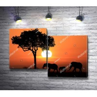 Африканские слоны на закате
