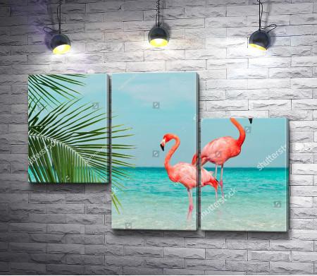Фламинго на тропическом побережье