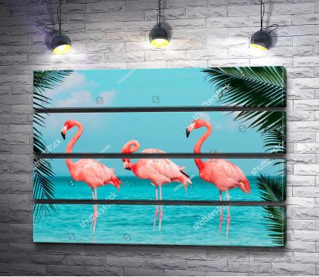Фламинго в тропиках