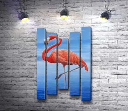 Фламинго на фоне голубого ясного неба