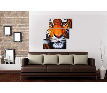Морда амурского тигра