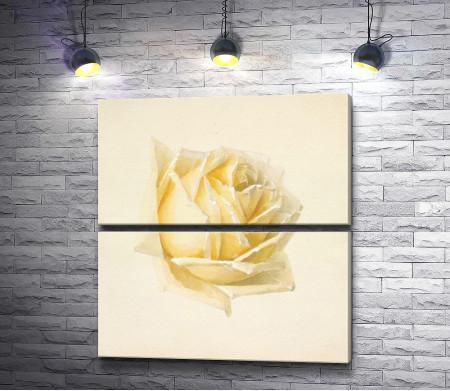 Набросок розы (Поль де Лонгпре)