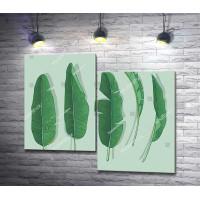 Зеленые листья на пастельном фоне