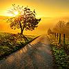 Пейзажи во время рассвета