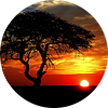 Пейзажи во время заката
