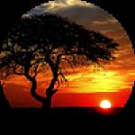 """Картины на холсте по теме """"Пейзажи во время заката"""""""