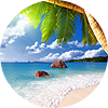 Тропические пейзажи