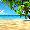 Пляжи, тропики