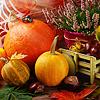 Осенние натюрморты