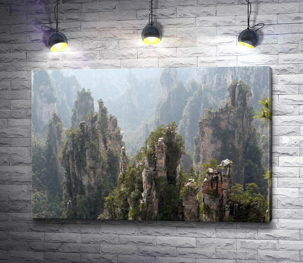 "Картина ""Удивительный парк Чжанцзяцзе. Китай"""