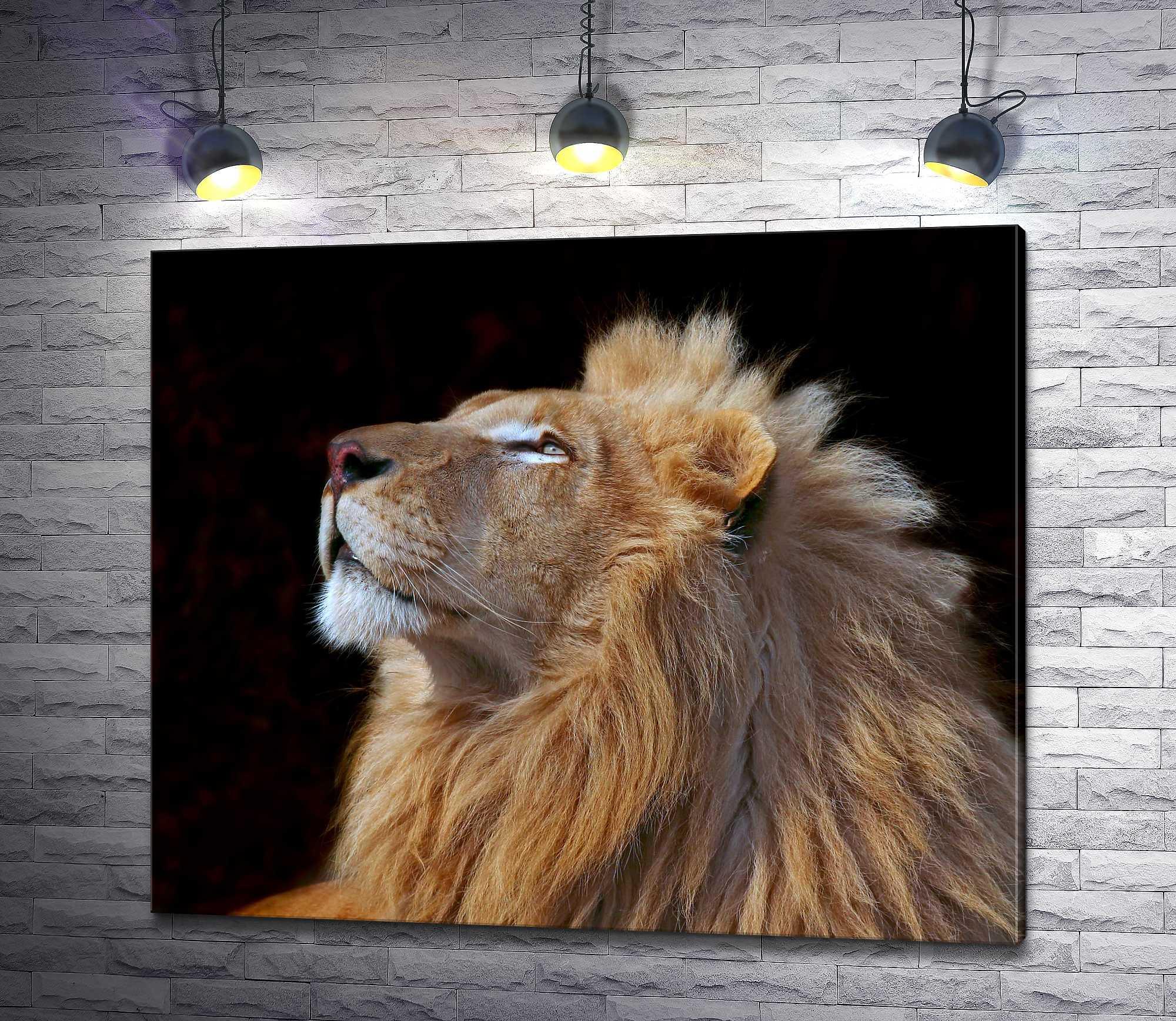"""Картина """"Гордый лев"""""""