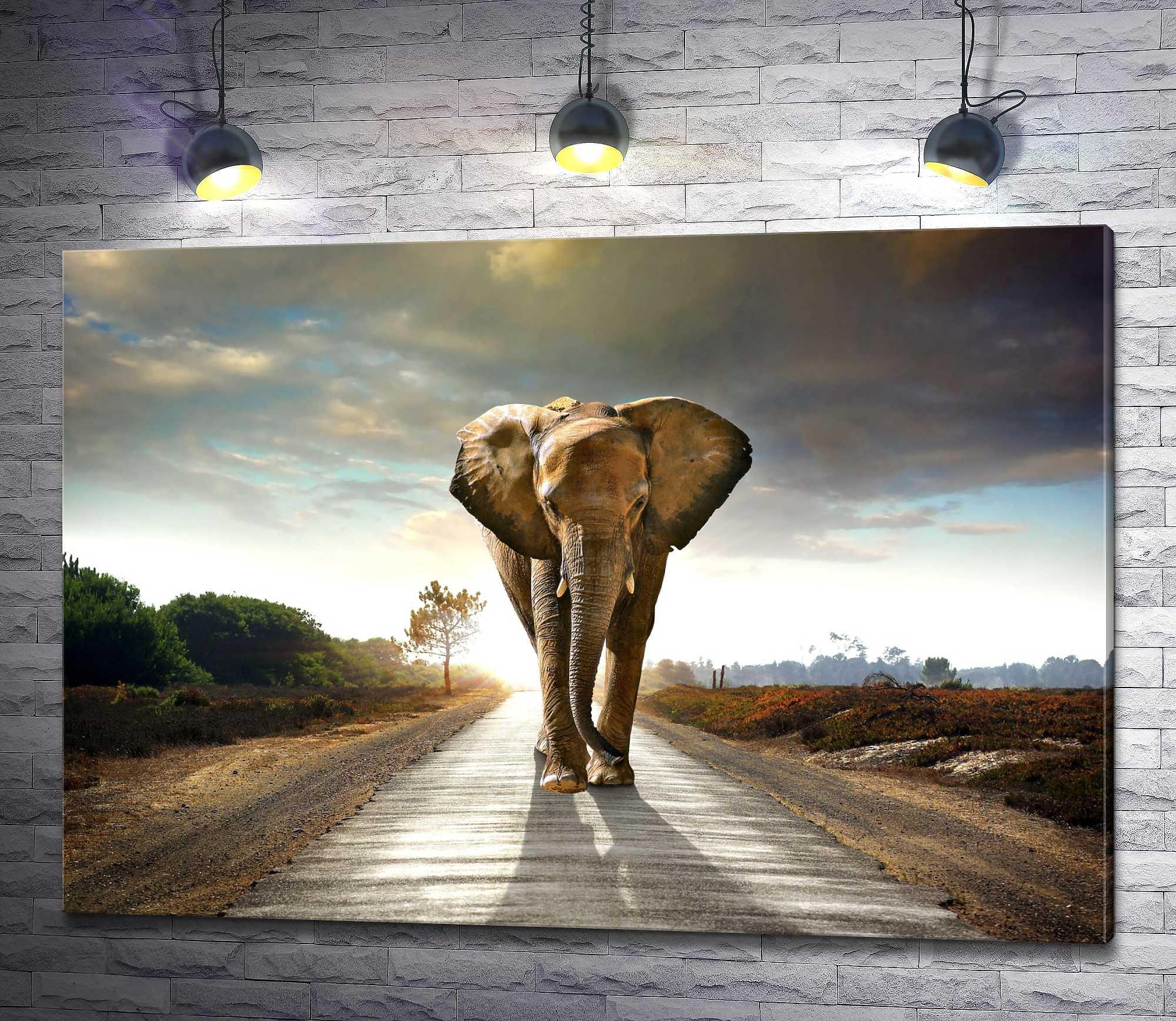 "Картина ""Одинокий слон на дороге"""
