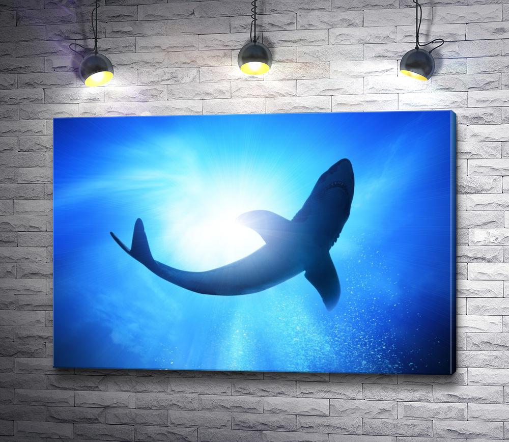 """Картина """"Акула под водой"""""""